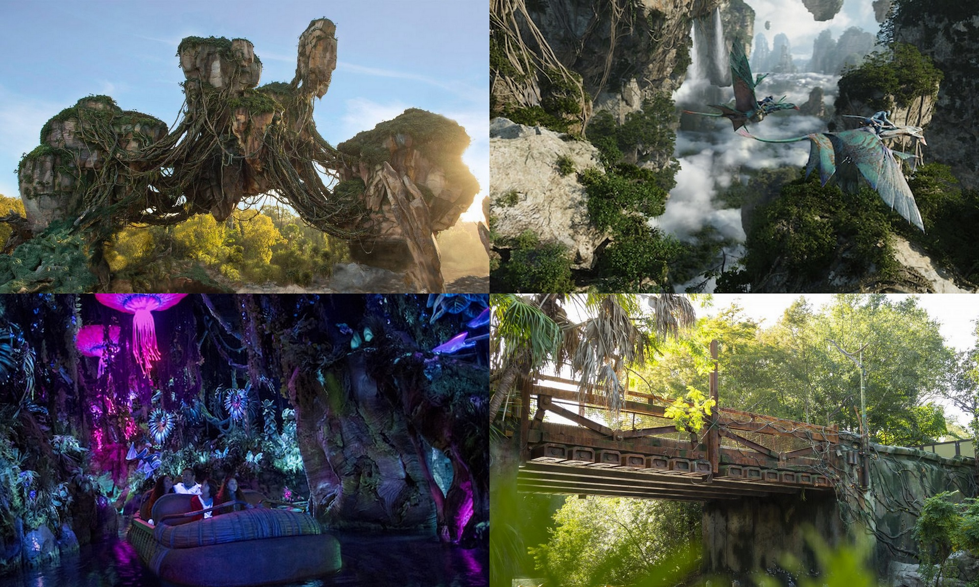 an-inside-look-at-pandora-the-world-of-avatar-in-disneys-animal-kingdom-at-walt-disney-world