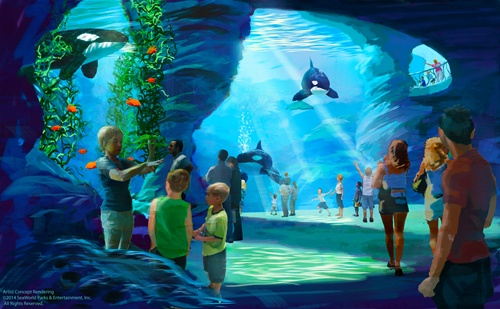 new-killer-whale-environments-at-seaworld-parks